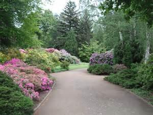 Garten by File Blumen Im Gro 223 En Garten Dresden Jpg Wikimedia Commons