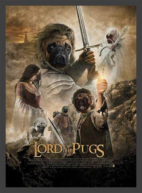 lord pug the lord of the pugs pug lovin it