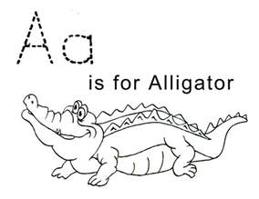 aligator coloring pages free printable alligator coloring pages for