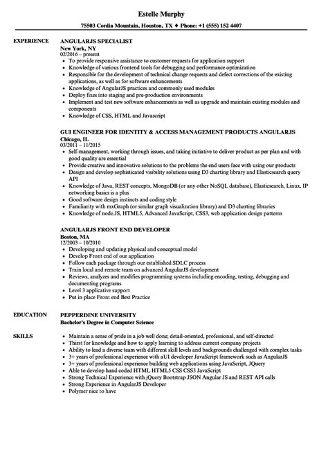 Angularjs Resume by Angularjs Resume Sles Velvet