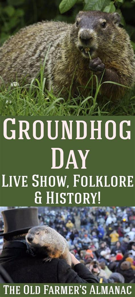 groundhog day lore 257 best seasonal advice images on
