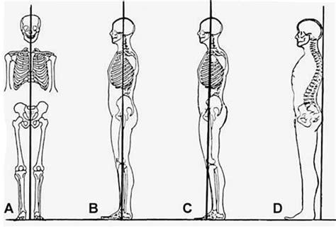 cadenas vélo test 10 consejos sobre h 225 bitos posturales y ergonom 237 a fisioteca