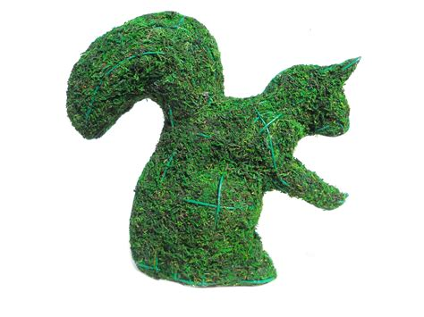 squirrel topiary squirrel moss topiary 8 quot h