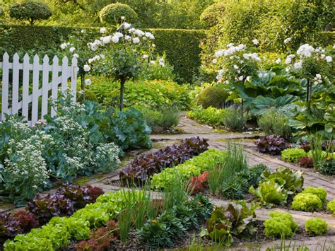geometric vegetable garden hgtv