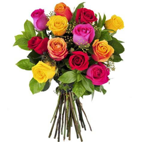 Home Decoration Shopping by Dial A Bouquet 12 Mixed Roses Free Flower Delivered In