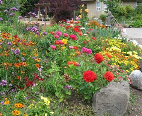 backyard flower garden god is in the backyard morning meditations