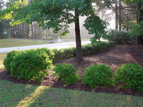 Landscape Supply Denver Nc Triangle Landscape Supplies Raleigh In Raleigh Nc