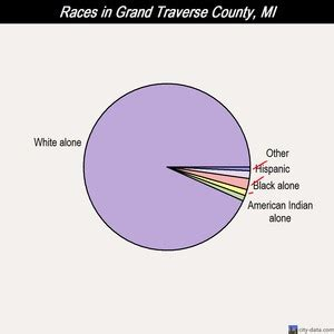 Grand Travers County Detox by Grand Traverse County Michigan Detailed Profile Houses