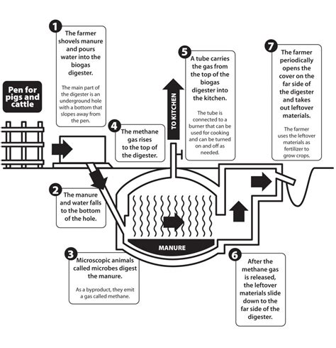 build your own biogas generator do it yourself