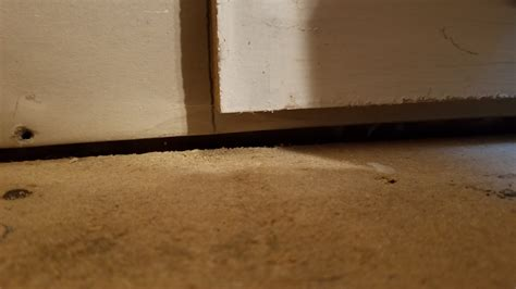 Flooring What Should I Do About A Gap The