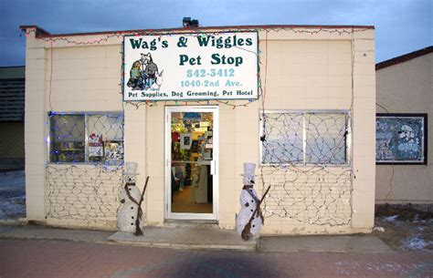 wag pet shop wag s wiggles pet store wainwright ab 1040 2 ave