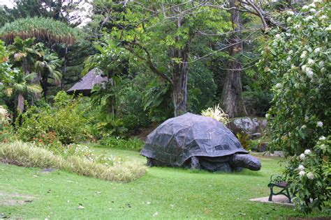 Seychelles National Botanical Gardens Seeksherpa Where Travellers Locals Connect