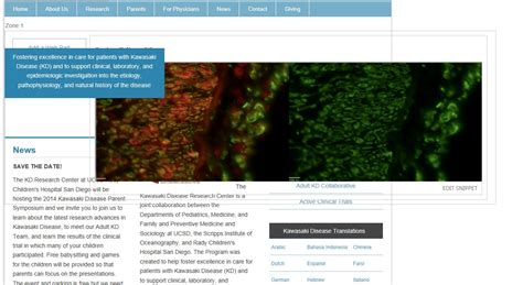 twitter layout is messed up sharepoint 2013 custom page layout looks different