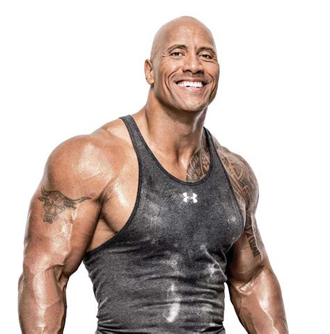 rock bodi the evolution of dwayne the rock johnson
