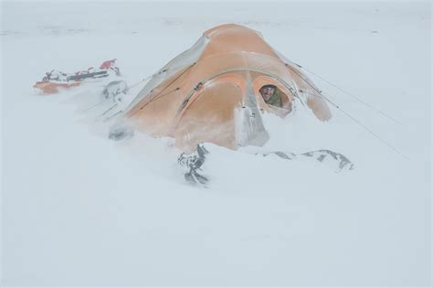 Arctique by Photographer Vincent Munier ? The Lowepro Blog