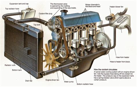 cooling system automedics  shelby