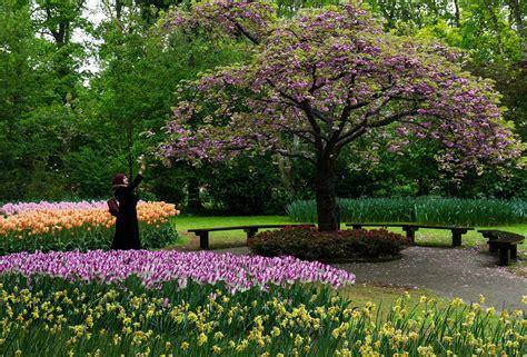 il giardino incantato il giardino incantato juzaphoto