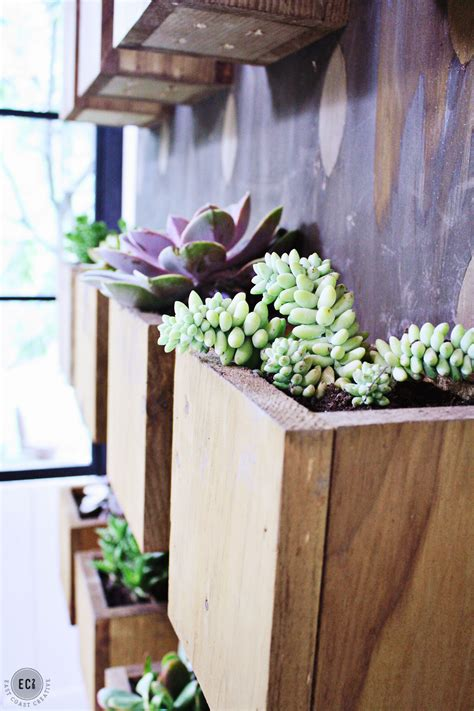 diy succulent planter diy garden wall urban sunroom makeover east coast