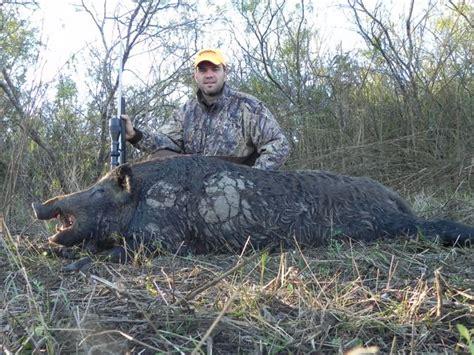 outdoor adventures worldwide south texas hogs