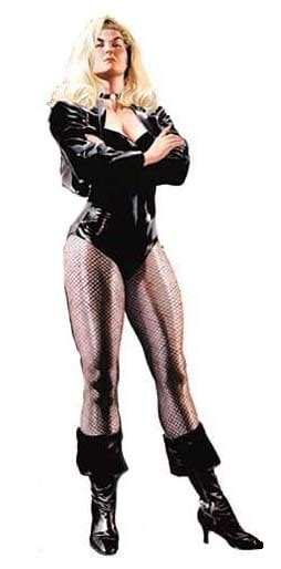 Dc Bust Black Canary fanwish black canary in classic on the dceu by alex ross dc cinematic