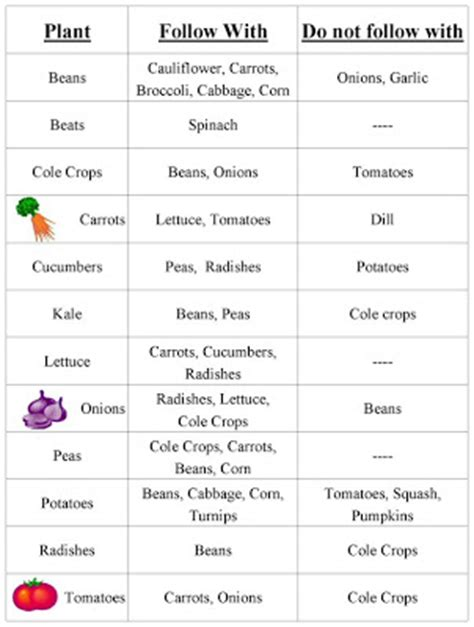The Rustic Garden Yeehaw Let S Do The Veggie Two Step Vegetable Garden Rotation Chart