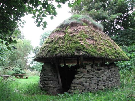 la shelter shelter in gullet wood 169 geograph britain and ireland