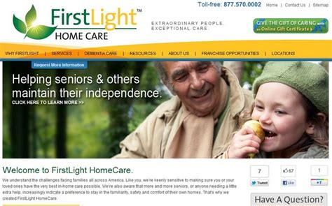 Light Home Care by Firstlight Homecare Net Revenue Of Franchised Businesses