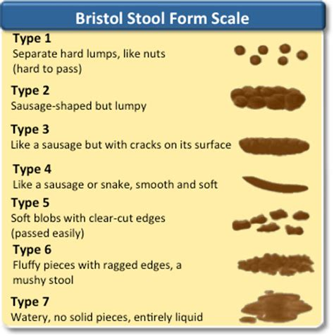 bristol stool form scale rapidcme