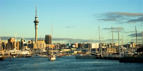 boat cruise auckland sailing auckland harbour cruise tours everything new zealand