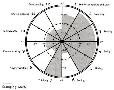 wellness wheel template blank wellness wheel pictures to pin on pinsdaddy