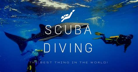 dive travel dive travel the best guide to scuba diving and