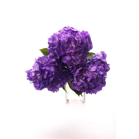 types of purple purple hydrangea petite hydrangea types of flowers