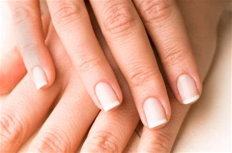 healthy nail beds image gallery healthy fingernails