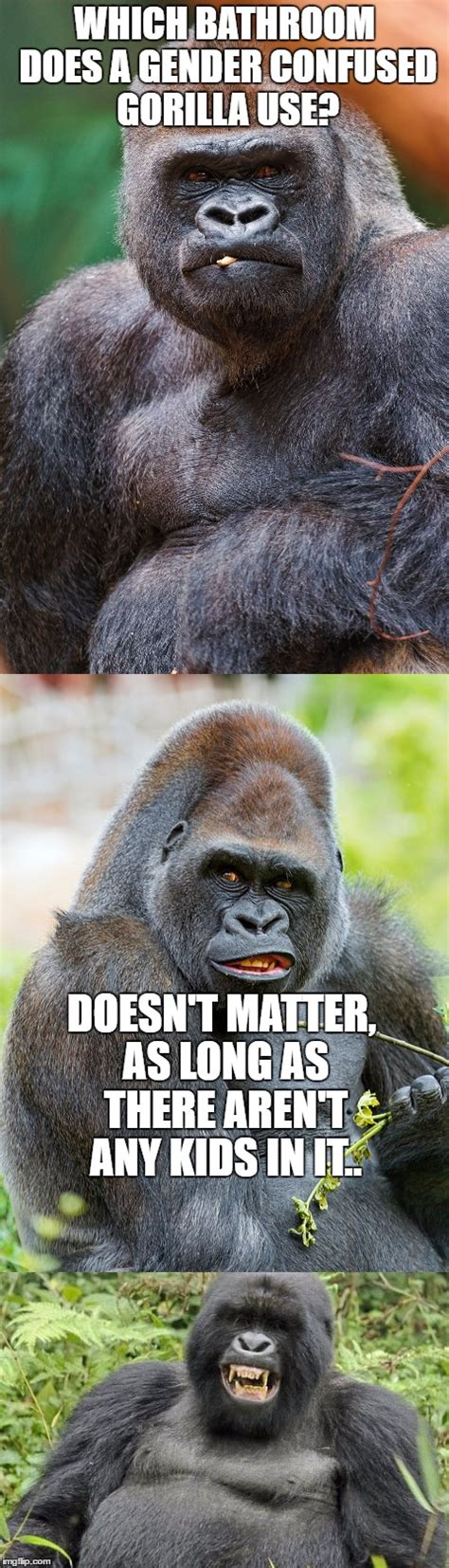Gorilla Memes - bad pun gorilla imgflip