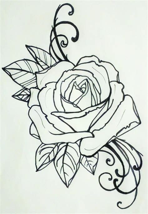 outline rose tattoos roses free pictures
