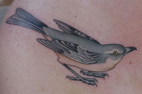 mockingbird tattoo northern mockingbird