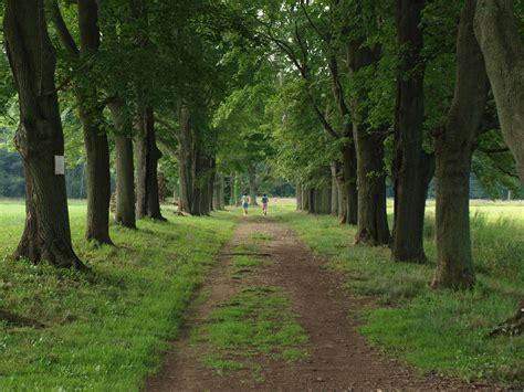 tree farms near appleton appleton farms grass rides essex county trail association