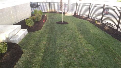 superior lawn care construction quality lawn care and