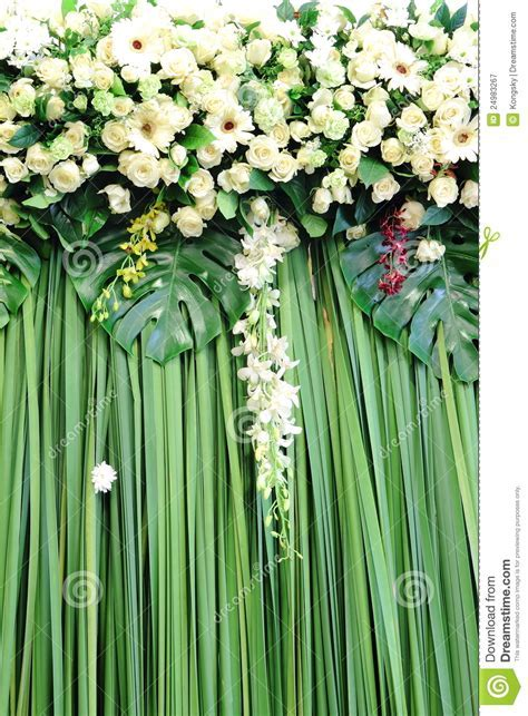 Green And White Backdrop Flowers Stock Image   Image of