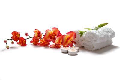 Zimmerorchideen Pflege by Zygopetalum Bl 252 Ht Nicht So Bringen Sie Die Orchidee