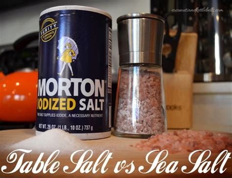 table salt vs sea salt what s the difference coconuts