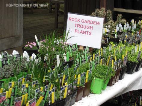 Rock Garden Plants For Sale Rock Garden Plants For Sale Shoreline Area News Kruckeberg Botanic Garden S Rock Garden Plant