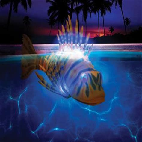 battery powered pool lights 19 best images about pool party on pinterest zebra party
