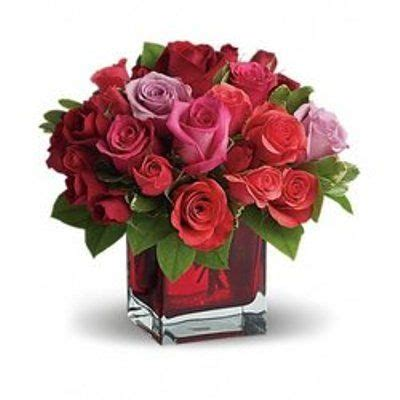 Send Flowers Cheap by Send Flowers Cheap Driverlayer Search Engine