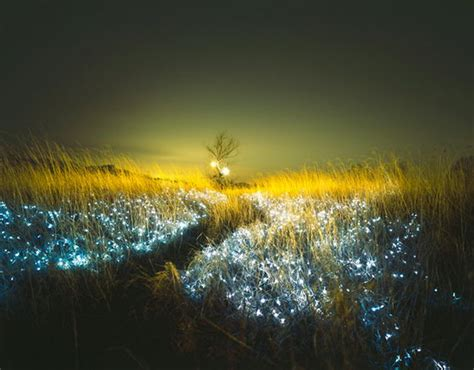 beautiful lights starry incredibly beautiful light installations by