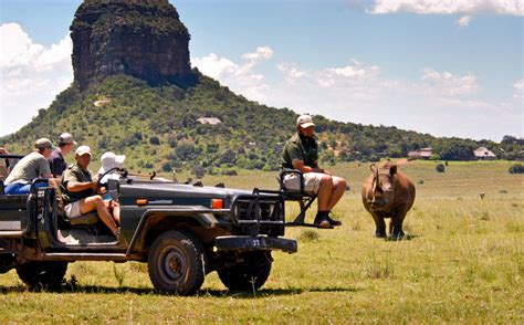 african safari jeep albatros travel and safaris cape town tourism