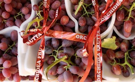 seme bari uva da tavola in puglia il punto sulla produzione 2011