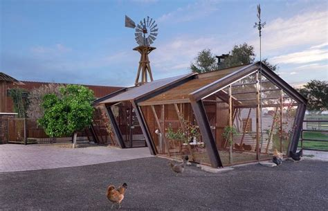 Large Chicken Sheds For Sale by Sumptuous Large Chicken Coops For Sale In Garage And Shed