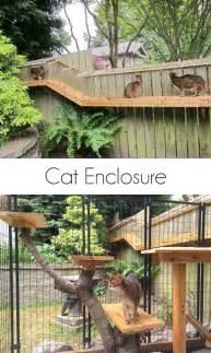 awesome large diy backyard cat enclosure cuckoo4design