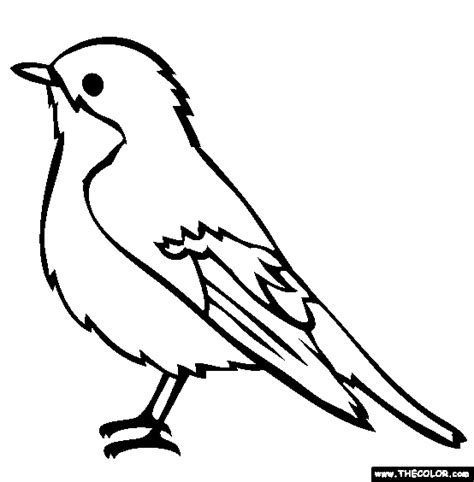 bird  coloring pages page